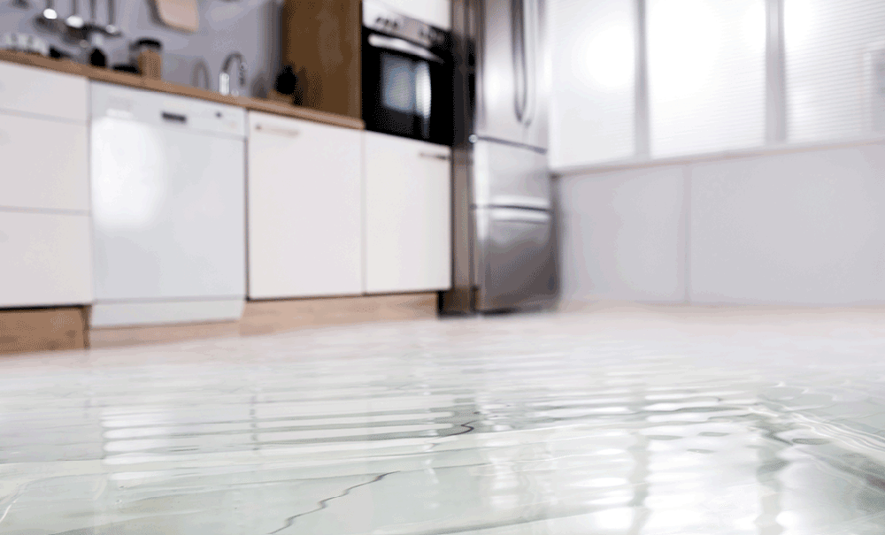 Will My Homeowners Insurance Cover Water Damage From Dishwasher?