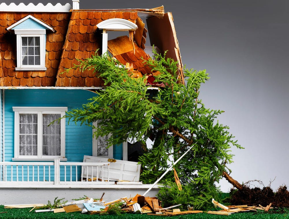 Does Homeowners Insurance Cover A Tree Falling On A Neighbor's House?