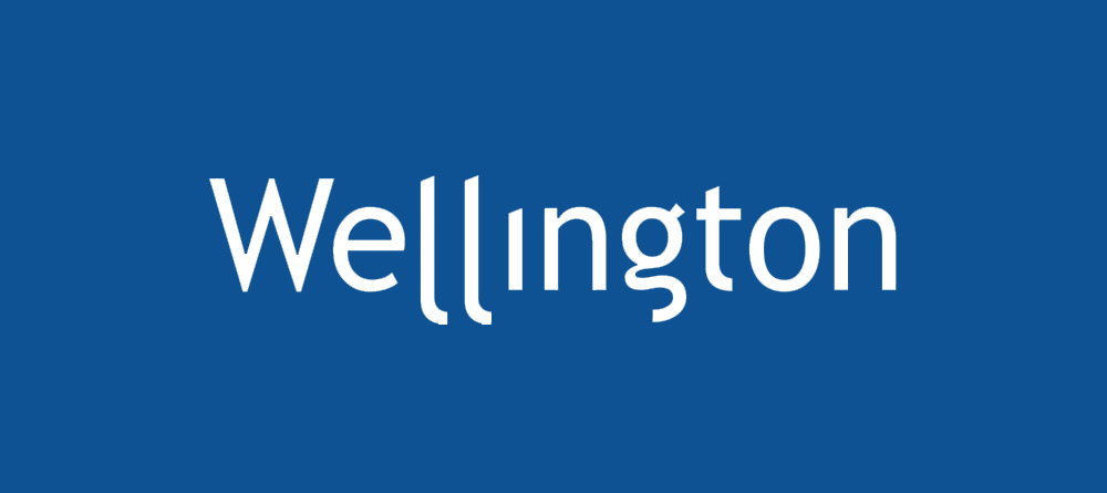 Wellington Insurance Group Homeowners Review